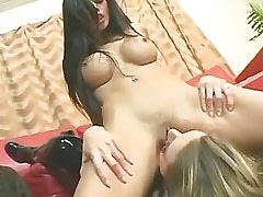 Depraved lesbians share big..