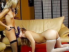 Sexy blonde whore licks her girlfriends pussy on couch