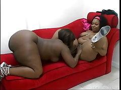 Erotic lesbian fatties don t..