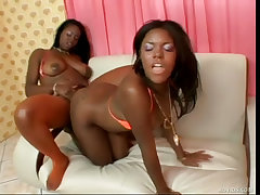 Black lesbians giving foot..