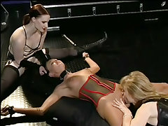 Babe terrorized by two strap..